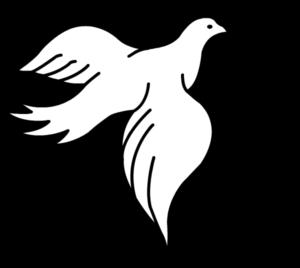 the_birdbirdbird-160120422_std1